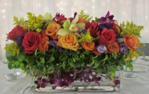 Thornhill Market Florist, floral arrangements, hand tied bouquets, wedding and corporate florals, plants, floral design seminars, weekly flowers in Thornhill and Toronto