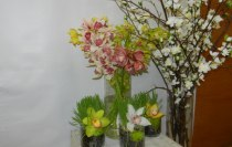 Thornhill Market Florist In House Decorating, Staging in Thornhill On