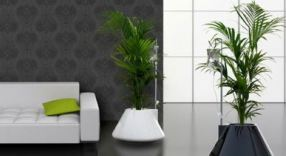 Thornhill Florist Home Staging in Thornhill and Toronto